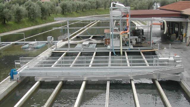 Milanese s n c costruzioni meccaniche per l 39 acquacoltura for Vasche per allevamento trote